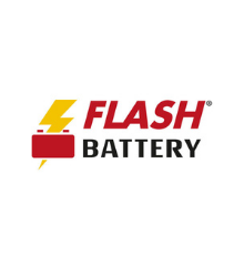 Flash Battery